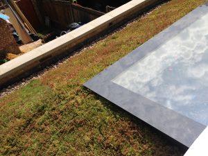 Sedum Green Roof Case Studies