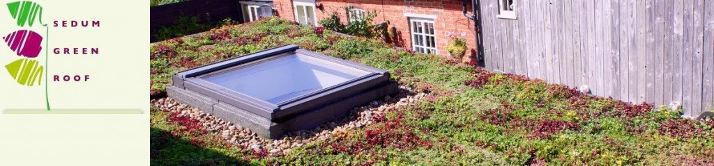 Ready to Lay Sedum Green Roofs
